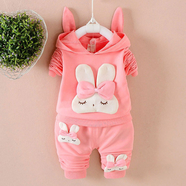 Baby Girl Hooded Sweatshirt & Pants