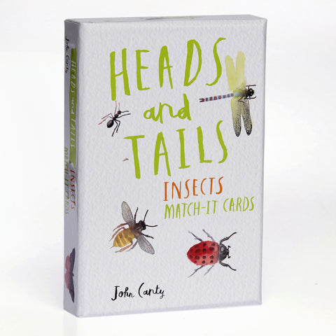 Heads and Tails: Insect Match It Game