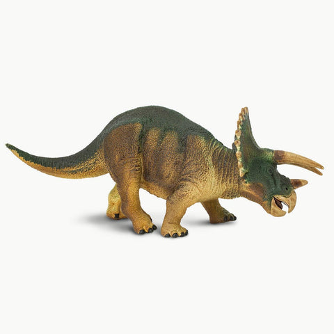 Small Triceratops Replica