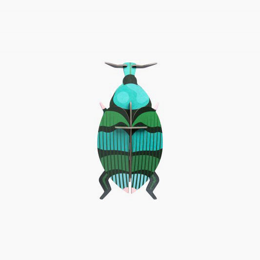 Weevil Beetle Wall Decor
