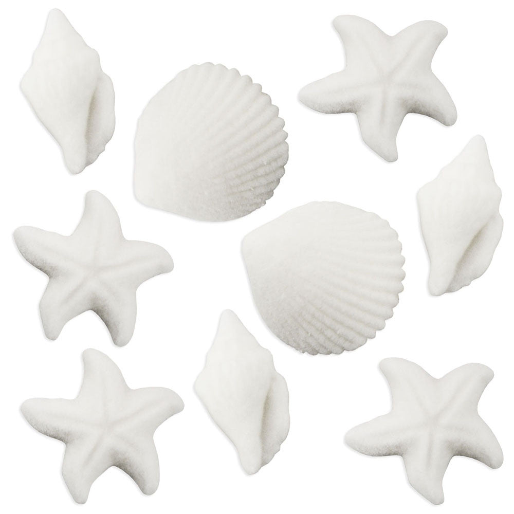 White Seashell Sugars
