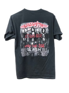 Aerosmith 2014 Tour Tee