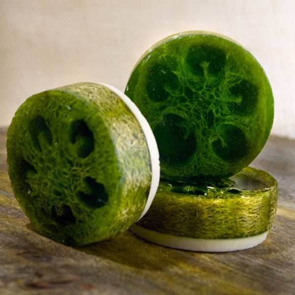 Luffa Soap Avocado Cilantro