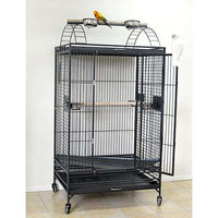 Large Play-top cage