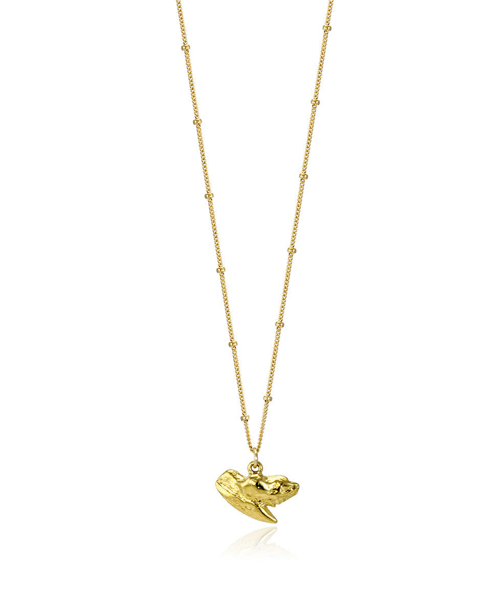 Gold Shark Tooth Necklace - Devin Krista Jewelry
