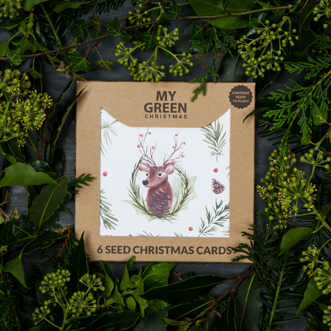 Seed Christmas Cards - Box of 6