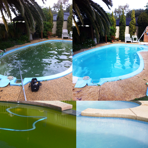 Green to Clean Pool Clean POA