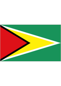 12x18in Flag On Stick-Guyana