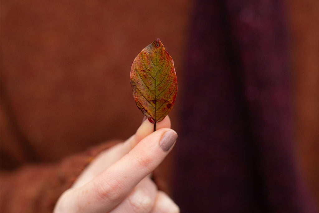 A single orange and green tone leaf is held by a light tone hand with freckles