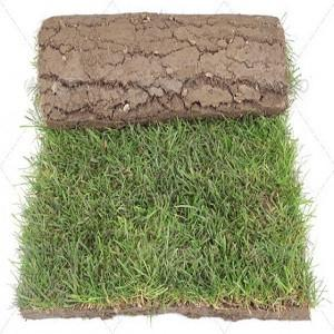 Selection Grass Carpet Rolls