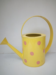 Watering Can 2.5 Litre