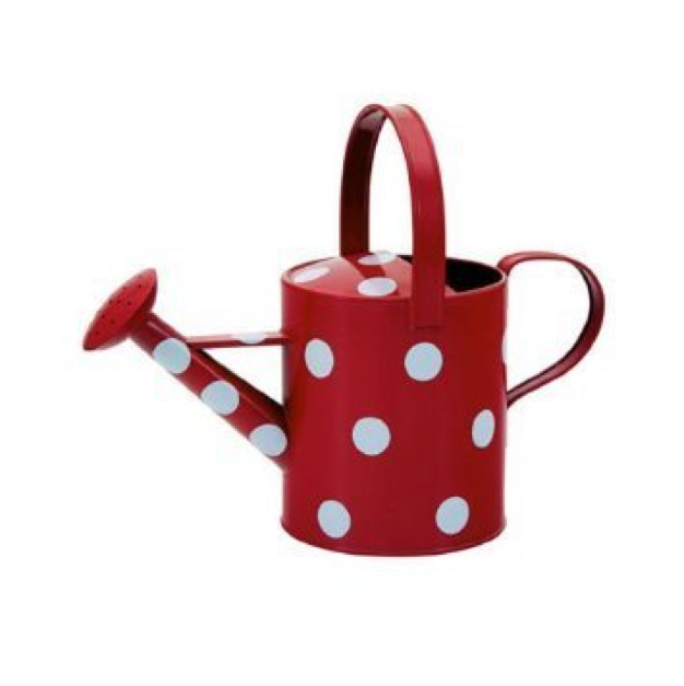 Watering Can 1.5 Litre