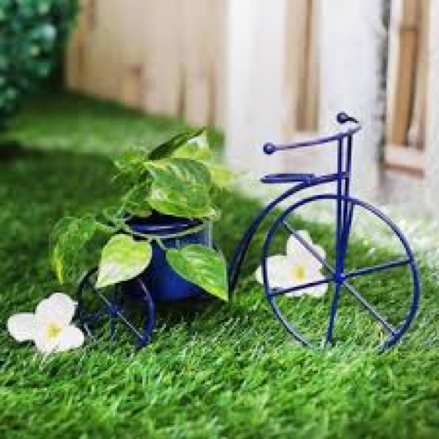 Table Tri-cycle Planter