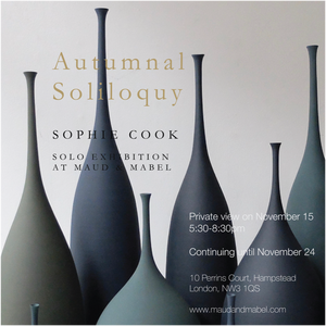 Solo Exhibition: Sophie Cook