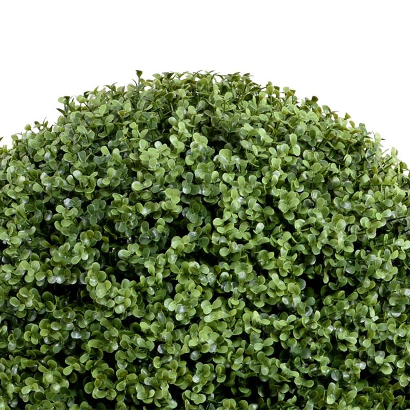 Boxwood Ball in Modern Cube Planter
