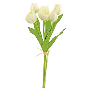 Small Tulip Bundle