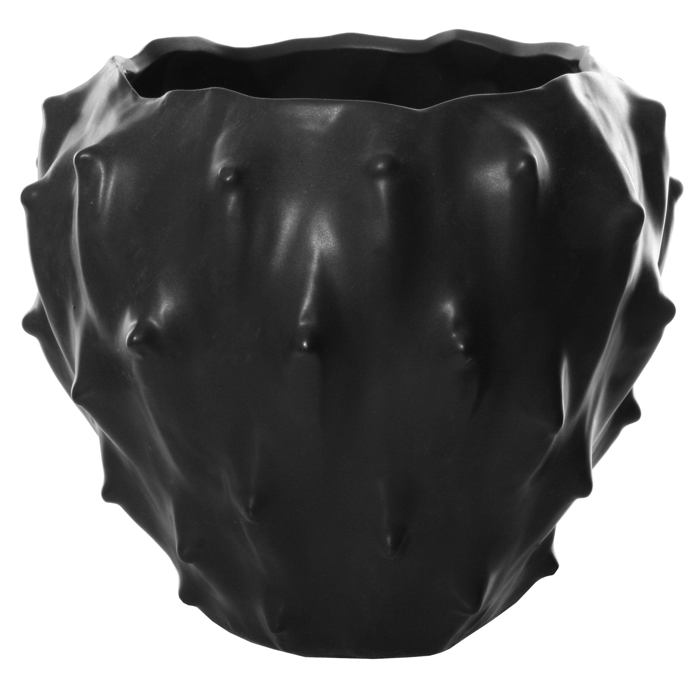 Spiny Pot Black
