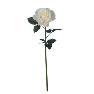 White Heirloom Rose 24""