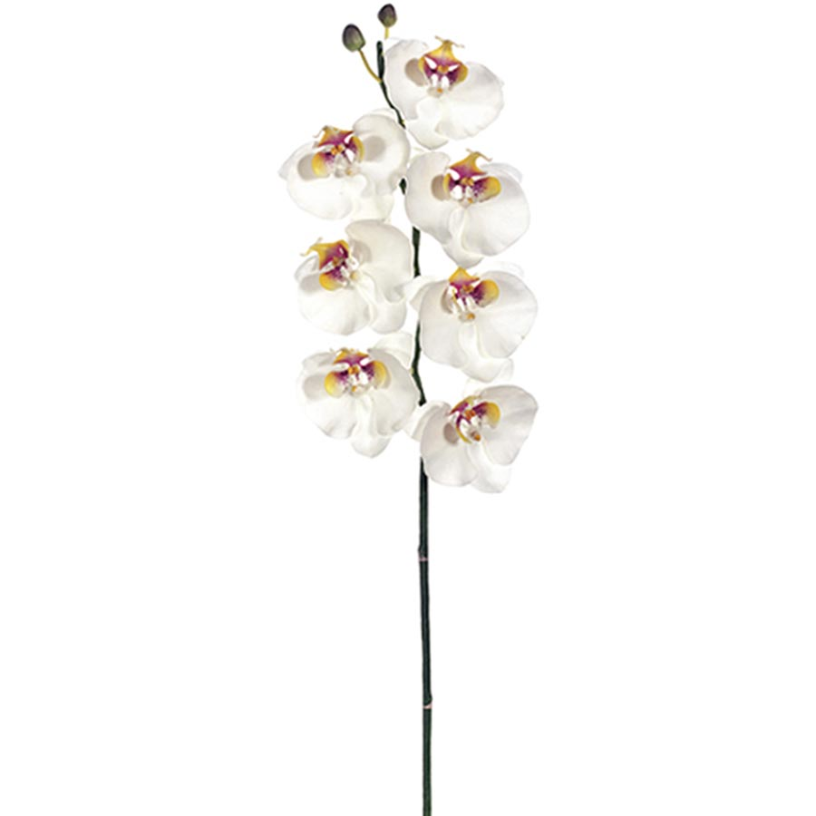 faux orchid permanent orchid faux phalaenopsis orchid stem