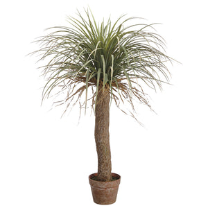 Desert Palm Tree 38""