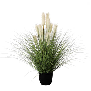 Reed River Grass Potted