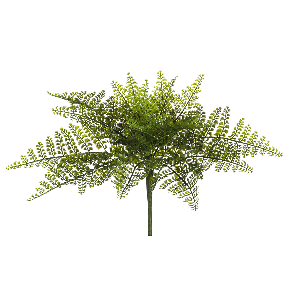 Maidenhair Fern 17""