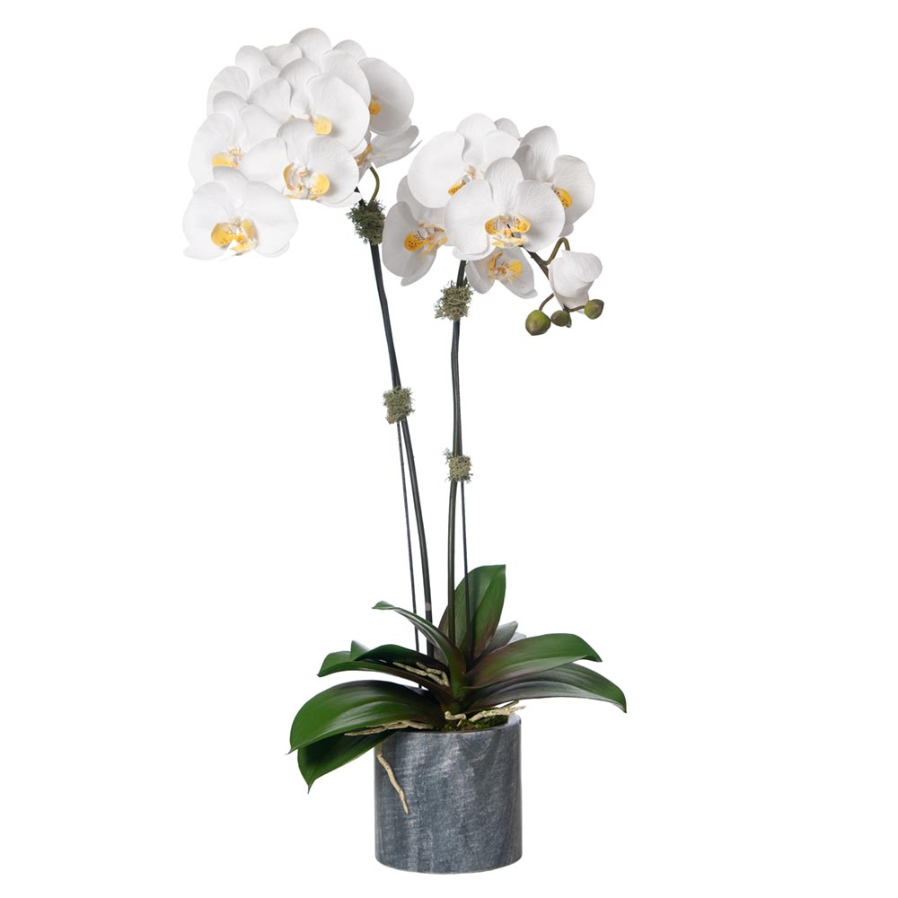 orchid silk|artificial orchids|artificial orchids plants|orchid artificial plant