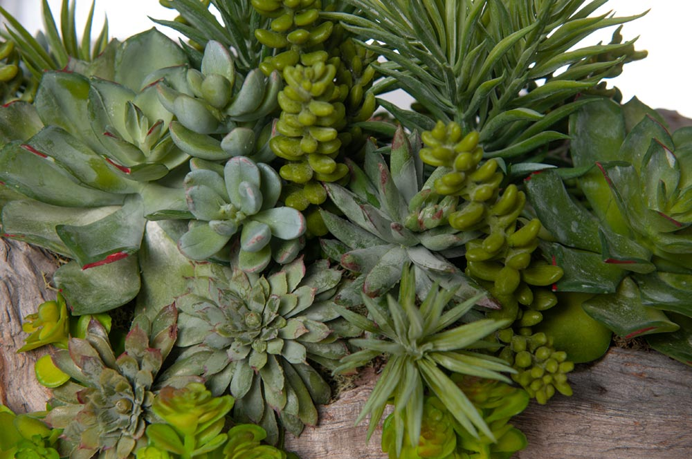 fake plants succulents|artificial plants succulents|artificial succulent plant