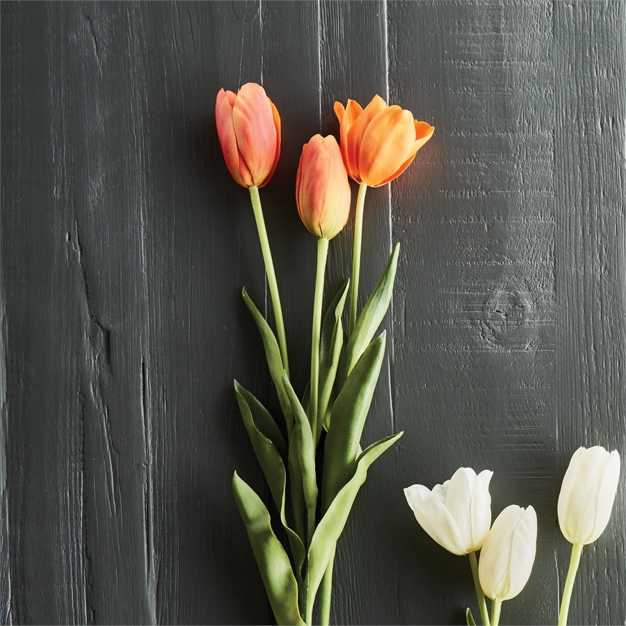 French Tulips 24""