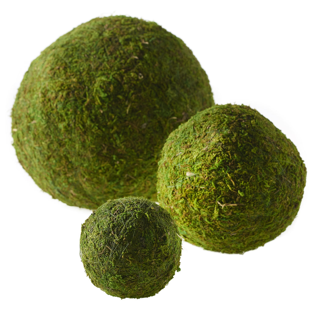 Moss Sphere (Preserved)