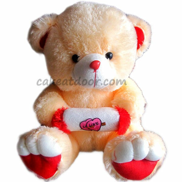 A sweet and soft Teddy - GiftPack03