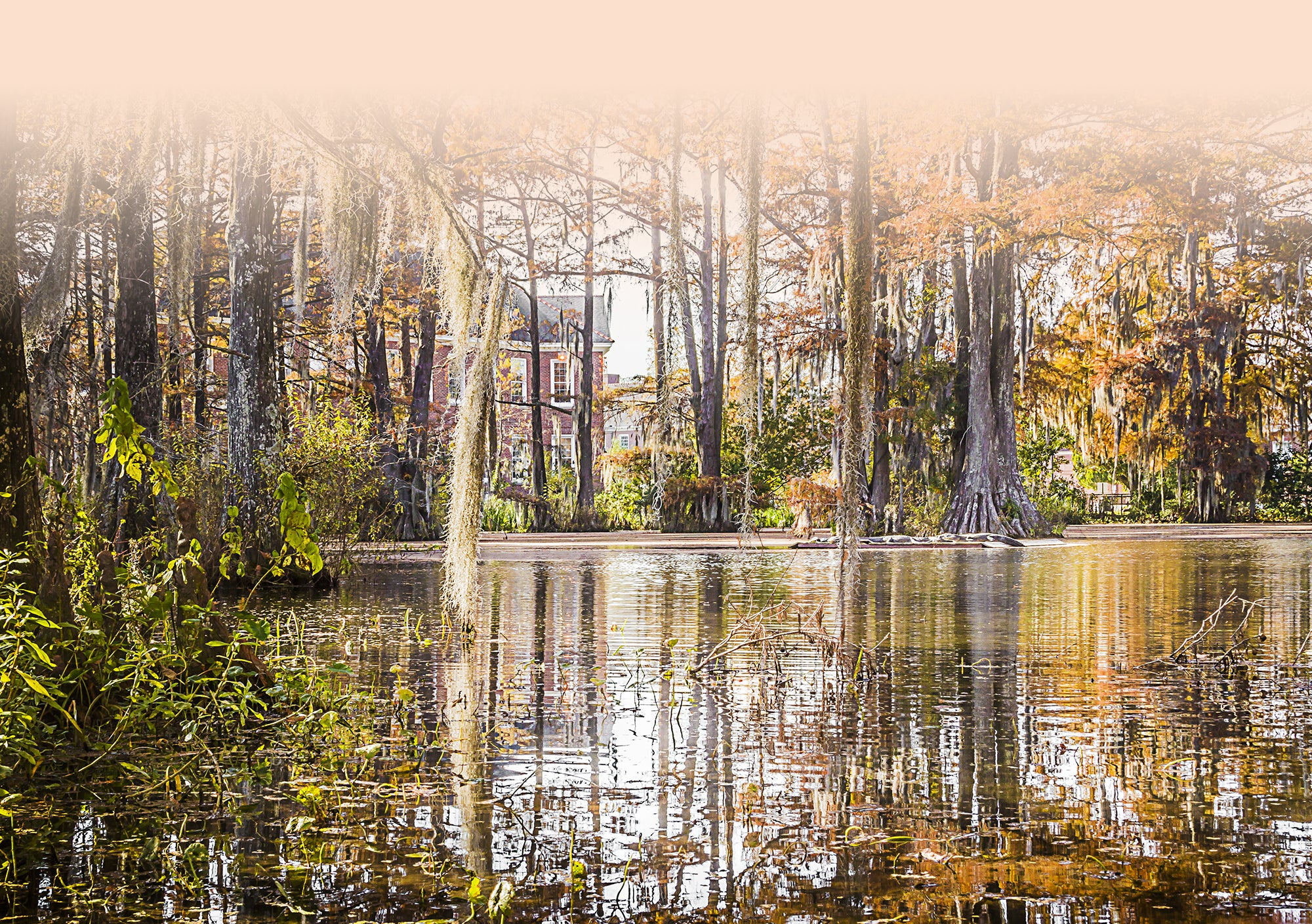 Lafayette and Cajun Country