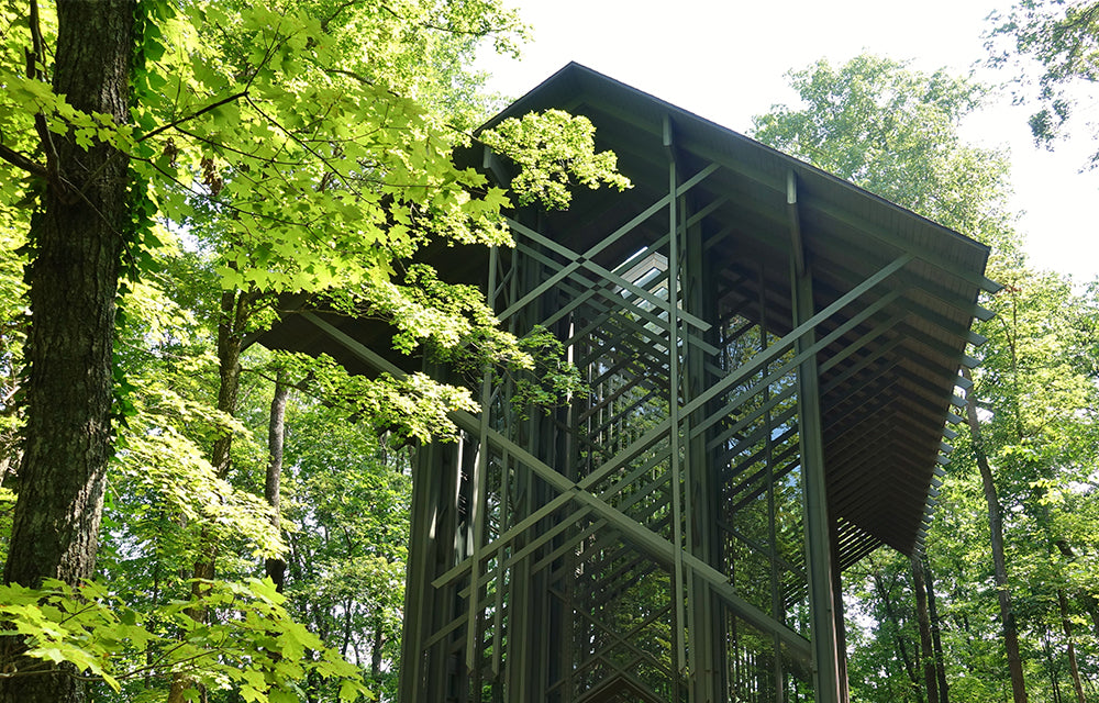 beautiful windowed building in forest