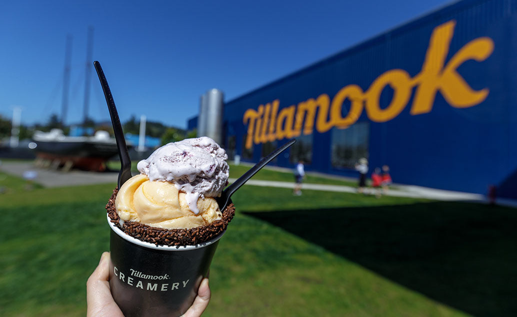:chocolate coned ice cream in front of tillamook sign