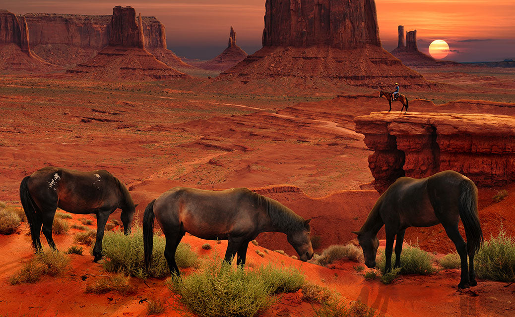 Horses by Monument Valley eating at sunset