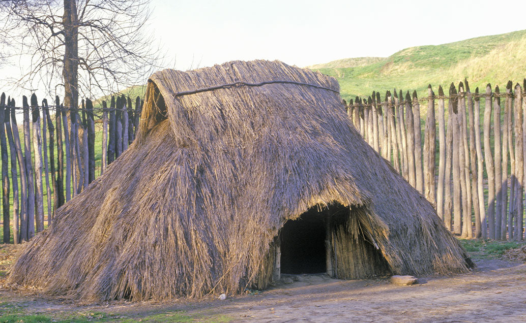 Hut made from thin branches