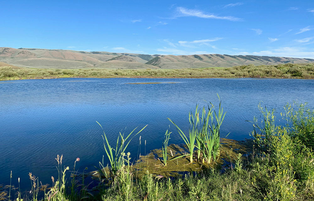 large river view with hills in background