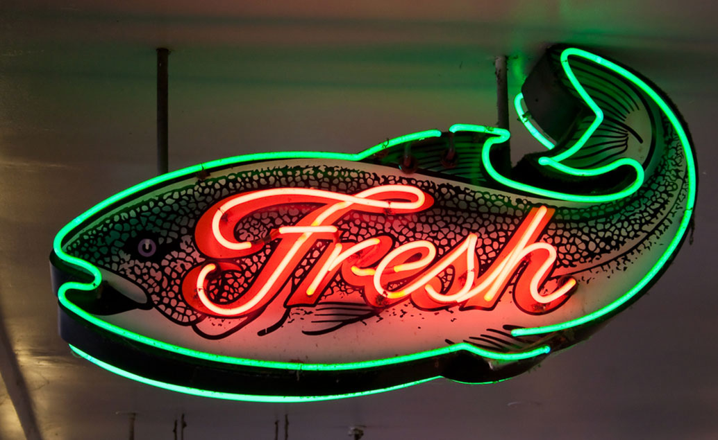 neon fish sign with fresh text