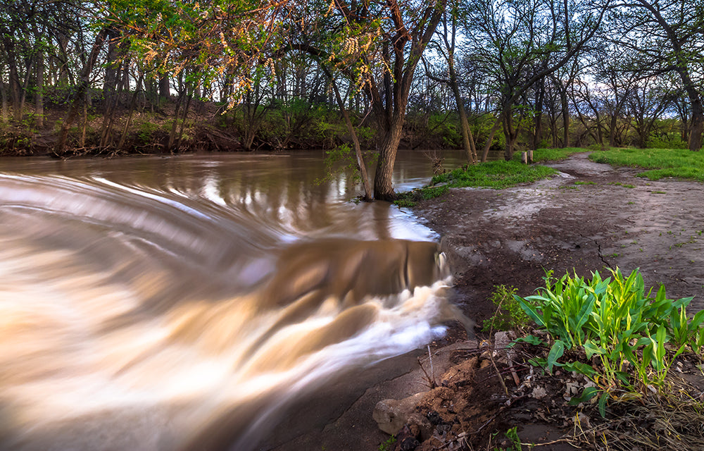river by trees and dirt trail