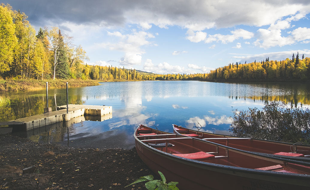 two canoes resting on lake shore