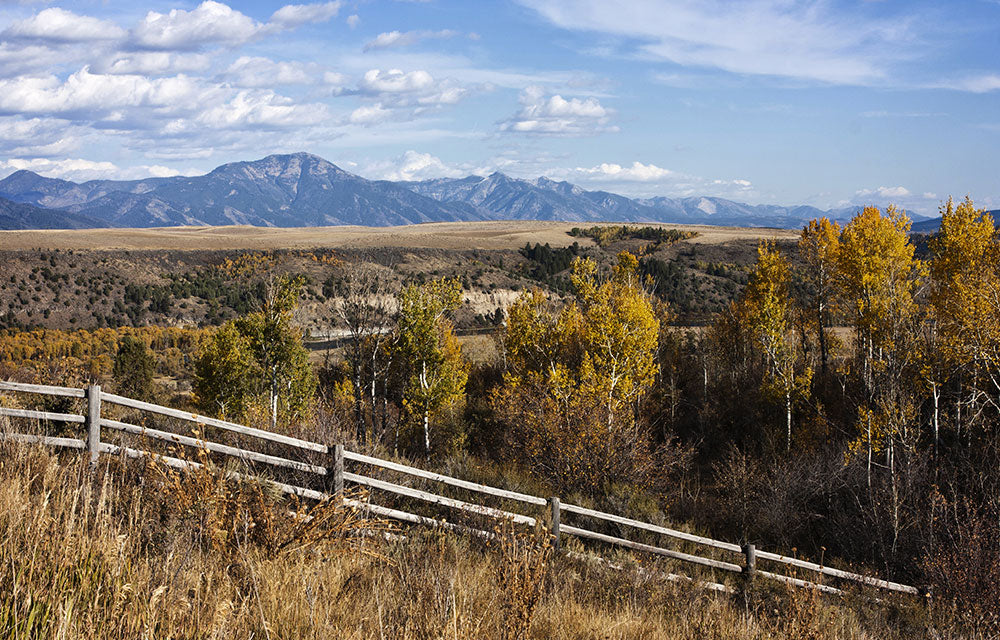 wooden fence with mountain range
