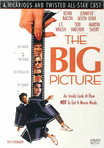 The Big Picture DVD Movie