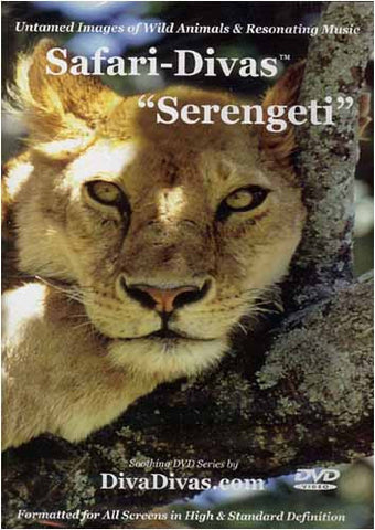 Safari-Divas - Serengeti DVD Movie
