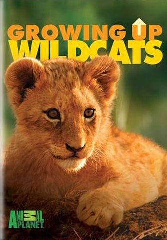 Growing Up Wild Cats DVD Movie