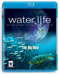 Water Life - The Big Blue (Blu-ray)