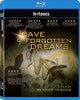 Cave of Forgotten Dreams (Blu-ray) BLU-RAY Movie