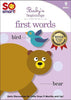 So Smart! Baby's Beginnings - First Words DVD Movie