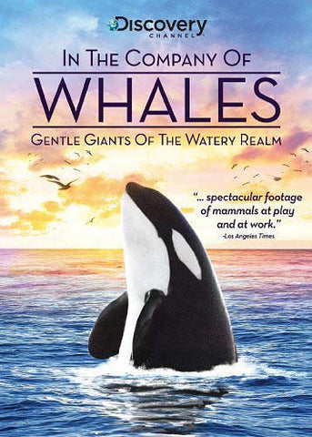 In the Company of Whales DVD Movie