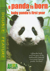A Panda Is Born/Baby Panda's First Year (Double Feature)