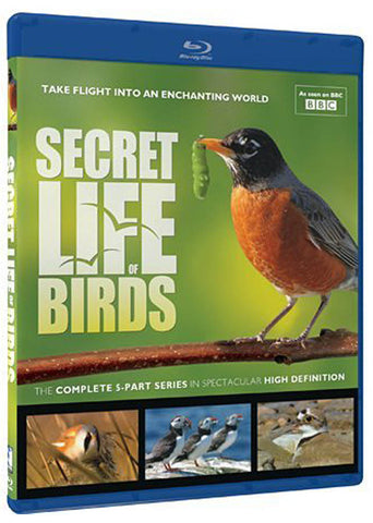 Secret Life of Birds (Blu-ray) (Limit 1 copy) BLU-RAY Movie